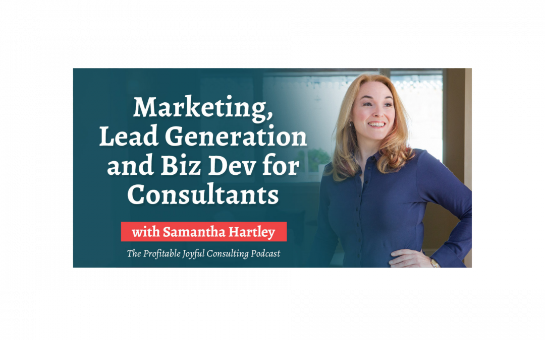Marketing, Lead Generation and Biz Dev for Consultants